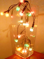 christmas-lights-in-vase